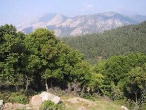 Xanthi Prefecture: Forest and Mountains with Marble Vacation